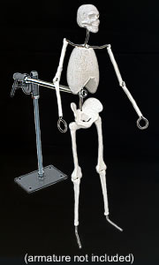 Armature Stand